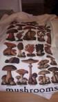 mushroom tee1